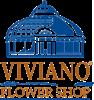 VIVIANO Coupons